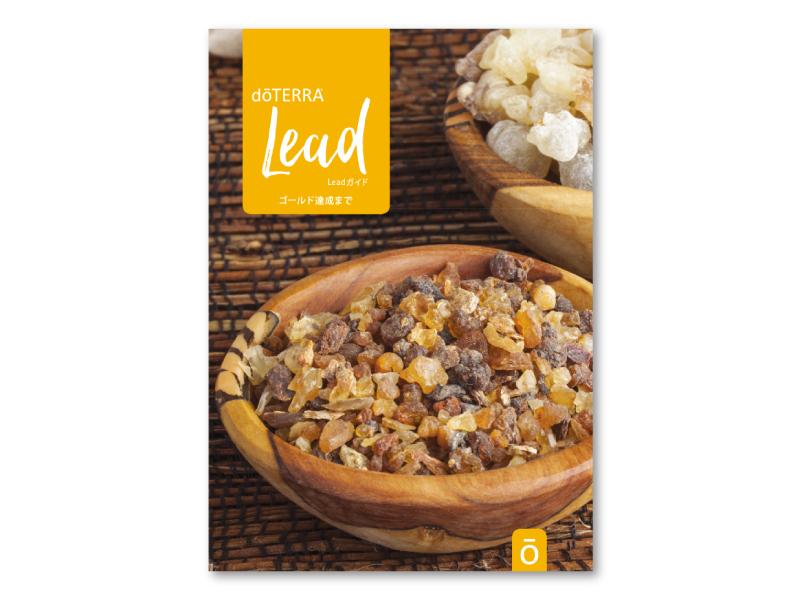 Lead ガイド