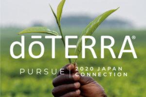 ジャパン コネクション プログラム発表